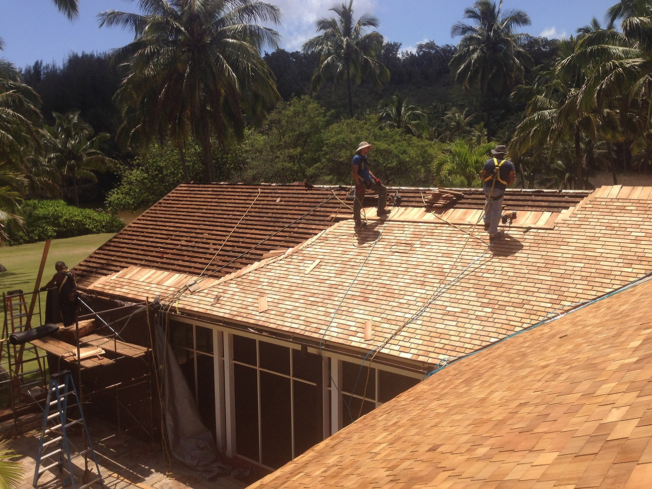 Cedar Shakes | Cedar Roofing | Shingle Panels | Wood Shingles